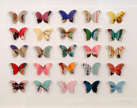 Catherineswanbutterflies