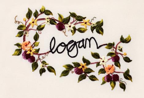 Logan-wine-australia1
