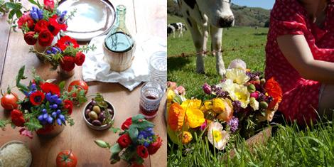 Studio-choo-flowers