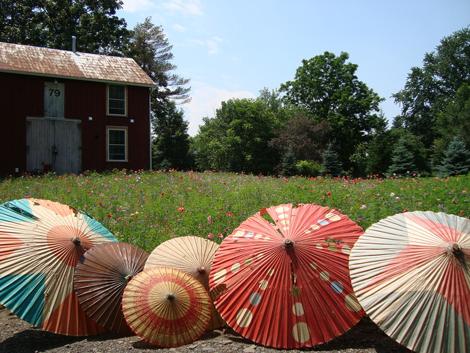 Mayalu-parasol