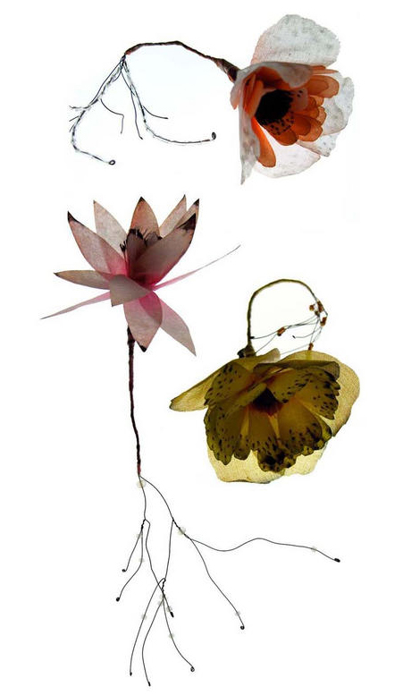 Lyndie-dourthe-flowers