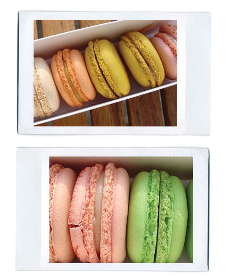 Paulette-macarons