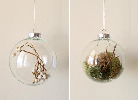 Land-rich-bulbs