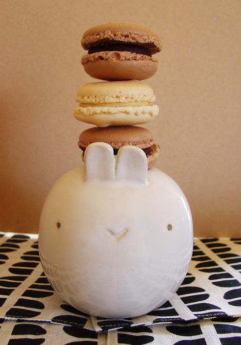 Trader-joes-macarons-taste-test