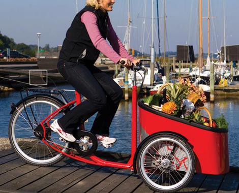 Veloris-mobii-bike