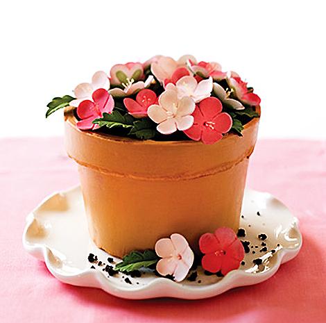 Mackenzie-flower-pot-cake