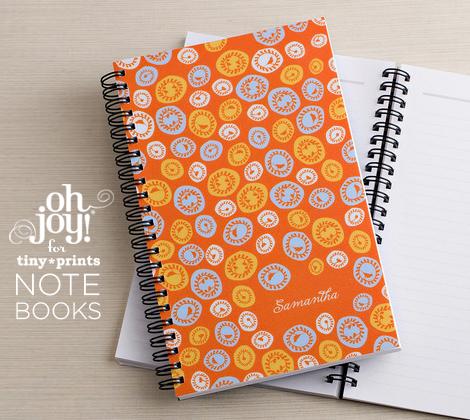2010_08_17_TP_notebooks
