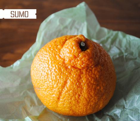Sumo-mandarin-orange1