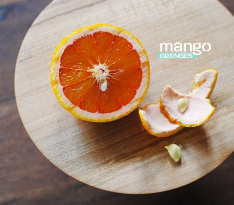 Mango-oranges-1