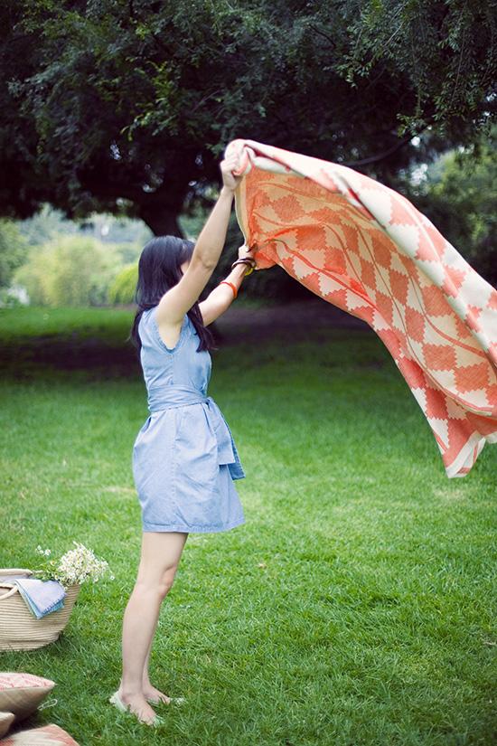 oh joy + terrain summer picnic