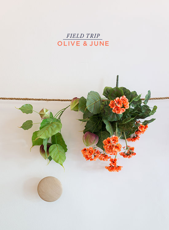 Oh Joy | Olive and June Nail Salon