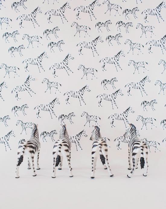 Oh Joy Zebra Butts