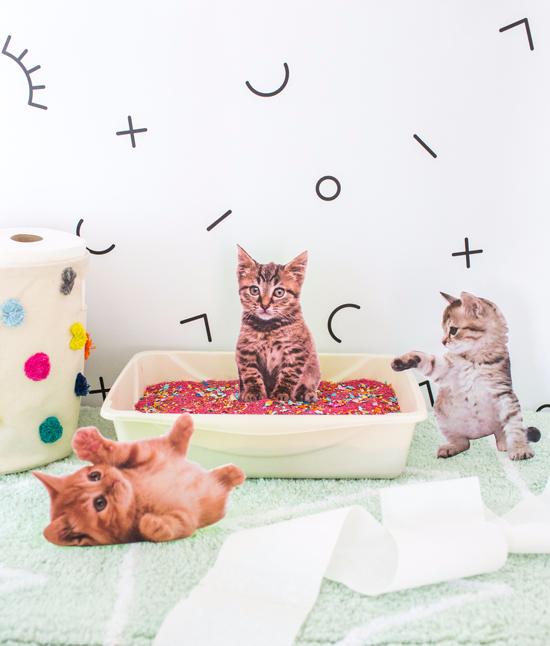 Oh Joy Cat Litter